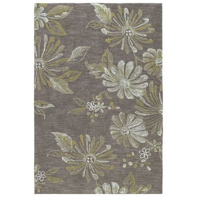 Allevard Brown Area Rug Rug Size: 8 x 10