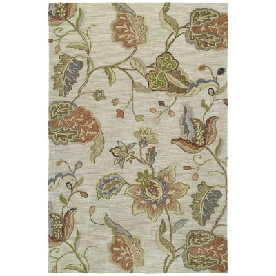 Allevard Hand-Tufted Spectacle Rose Area Rug Rug Size: 9 x 12