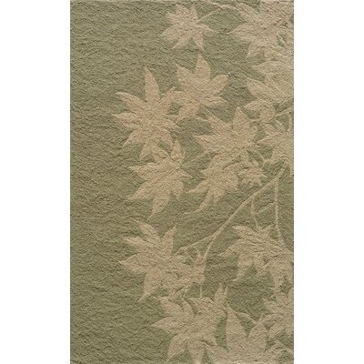 Moten Hand-Hooked Sage Indoor/Outdoor Area Rug Rug Size: Rectangle 5 x 8