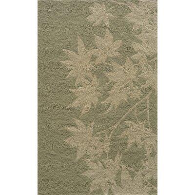Fleurance Hand-Hooked Sage Indoor/Outdoor Area Rug Rug Size: 2 x 3