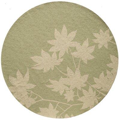 Fleurance Hand-Hooked Sage Indoor/Outdoor Area Rug Rug Size: Round 9