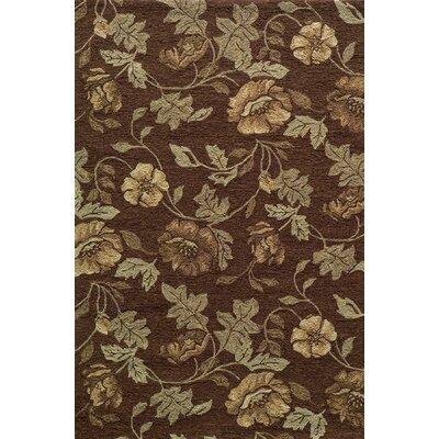 Fleurance Brown Indoor/Outdoor Area Rug Rug Size: 39 x 59