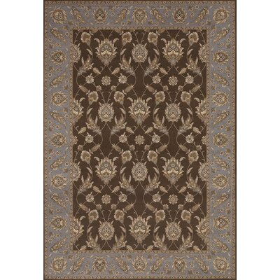 Saire Chocolate Area Rug Rug Size: 53 x 76