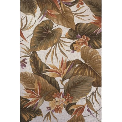 Labrosse Gray / Brown Area Rug Rug Size: 36 x 56