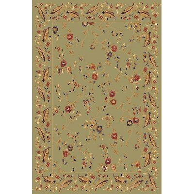 Rindge Green Area Rug Rug Size: Rectangle 53 x 77