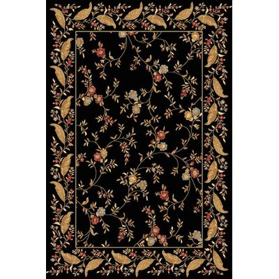 Rindge Floral Black Area Rug Rug Size: 53 x 77