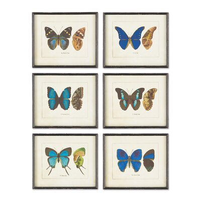 Papillon 6 Piece Framed Graphic Art Set