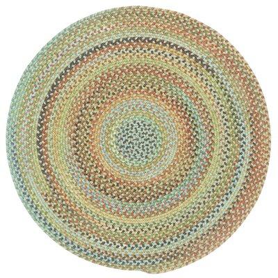 Phoebe Dusty Multi Variegated Rug Rug Size: Round 13