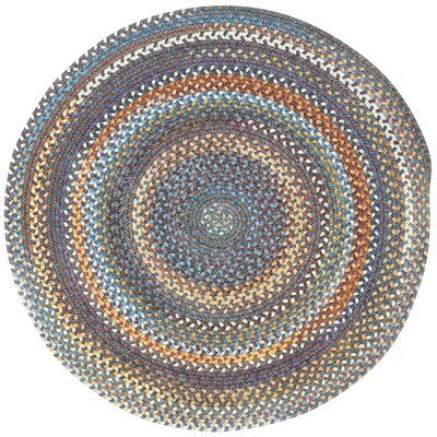 Phoebe Medium Blue Variegated Rug Rug Size: Round 13