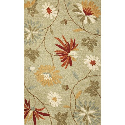Keira Sage Sofia Outdoor Area Rug Rug Size: Rectangle 33 x 53
