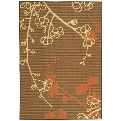 Laurel Brown Natural/Terracotta Outdoor Rug Rug Size: Rectangle 53 x 77