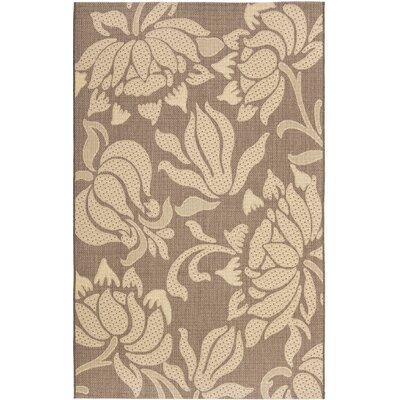 Laurel Light Chocolate/Cream Indoor/Outdoor Rug Rug Size: Rectangle 53 x 77