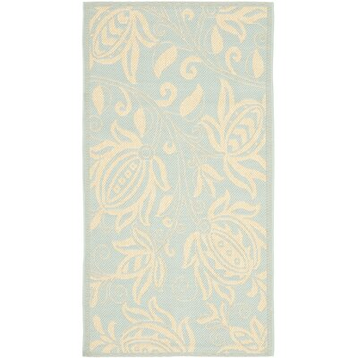 Laurel Aqua/Cream Indoor/Outdoor Area Rug Rug Size: Rectangle 67 x 96