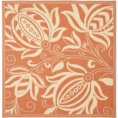 Laurel Terracotta / Natural Indoor/Outdoor Rug Rug Size: Square 710