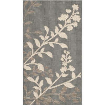 Laurel Anthracite / Beige Indoor/Outdoor Rug Rug Size: Runner 27 x 5