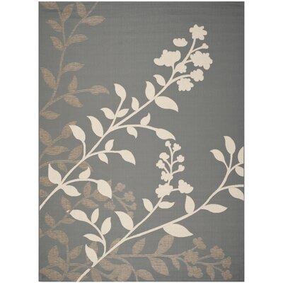 Laurel Anthracite / Beige Indoor/Outdoor Rug Rug Size: Rectangle 8 x 11