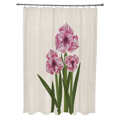 Amanda Amaryllis Floral Print Shower Curtain Color: Pink