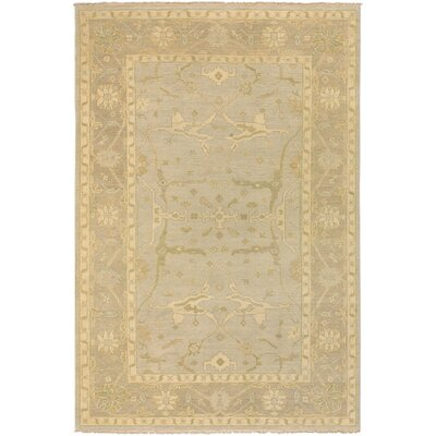 Hinson Cream/Beige Area Rug Rug Size: Rectangle 56 x 86