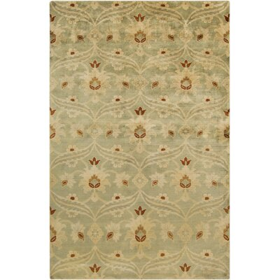 Hinson Sea Foam Area Rug Rug Size: Rectangle 56 x 86
