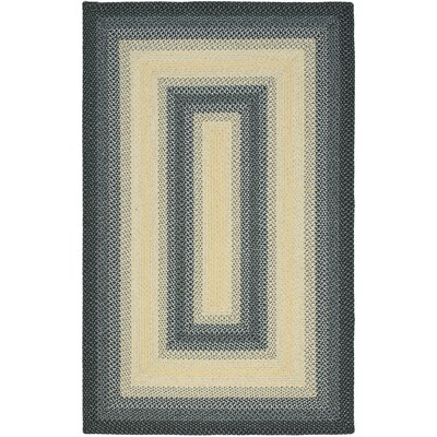 Georgina Hand-Woven Black/Grey Area Rug Rug Size: Rectangle 4 x 6