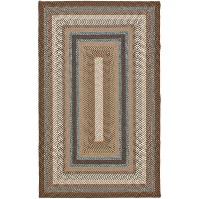 Georgina Hand-Woven Brown Area Rug Rug Size: Rectangle 6 x 9