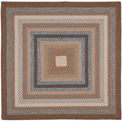 Georgina Hand-Woven Brown Area Rug Rug Size: Square 6