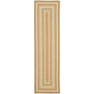 Georgina Tan/Multi Area Rug Rug Size: Runner 23 x 10