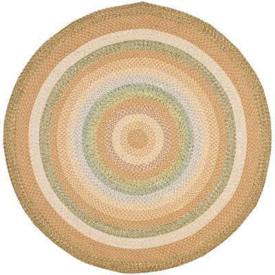 Georgina Tan/Multi Area Rug Rug Size: Round 6