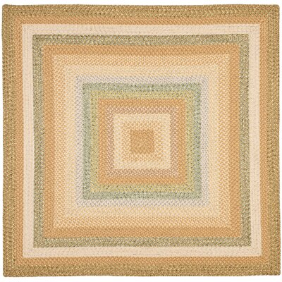 Georgina Tan/Multi Area Rug Rug Size: Square 6