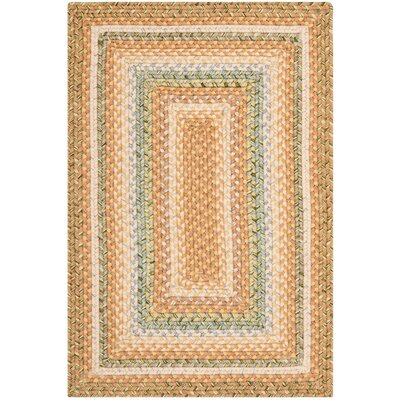 Georgina Tan/Multi Area Rug Rug Size: 26 x 4