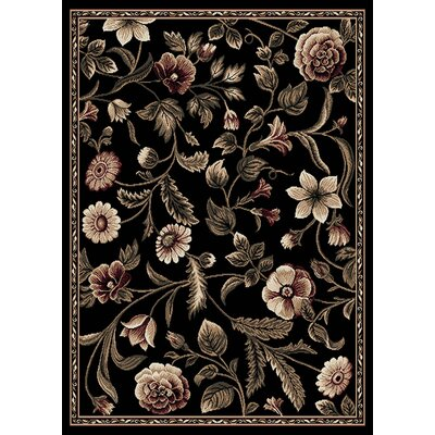 Bertie Area Rug Rug Size: Rectangle 37 x 52