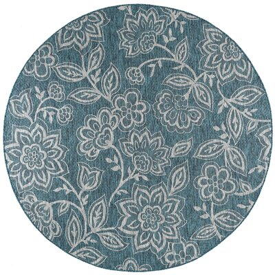 Stephane Transitional Aqua Indoor/Outdoor Area Rug Rug Size: Round 7'10