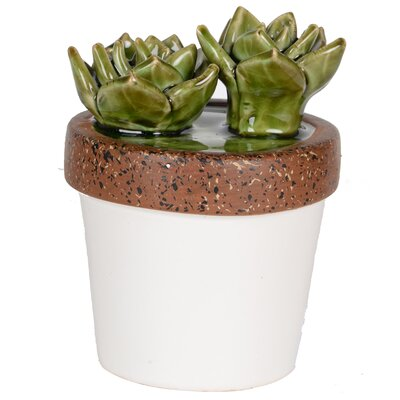 Ceramic Echeveria Plant Sculpture in White Pot