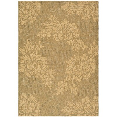 Laurel Gold & Natural Outdoor Area Rug Rug Size: Rectangle 67 x 96