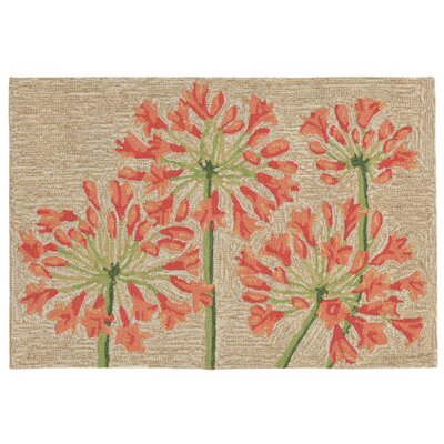 Dazey Lily Hand-Tufted Beige/Red Indoor/Outdoor Area Rug Rug Size: 2 x 3