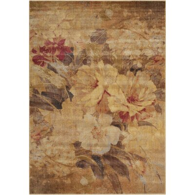 Daniela Beige Area Rug Rug Size: Rectangle 56 x 75