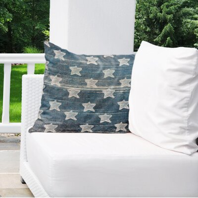 Tonya Indoor/Outdoor Euro Pillow