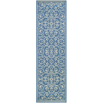 Miley Blue Indoor/Outdoor Area Rug Rug Size: Runner 23 x 119