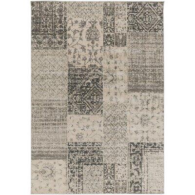 Jerome Charcoal & Beige Area Rug Rug Size: Rectangle 54 x 78