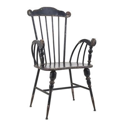 Trenton Arm Chair Finish: Black