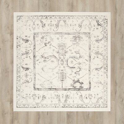 Porcello Ivory/Light Gray Area Rug Rug Size: Square 67