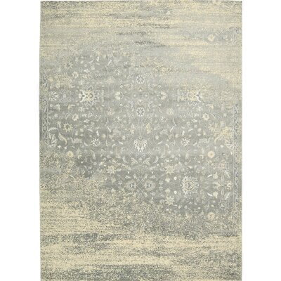 Bourgault Silver Area Rug Rug Size: Rectangle 35 x 55