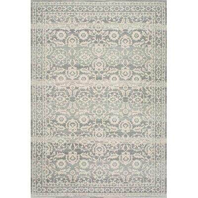 Valois Gray Area Rug Rug Size: 9 x 12