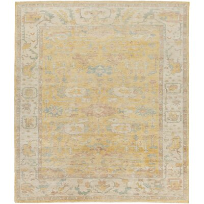 Boissonneault Gold/Beige Area Rug Rug Size: Rectangle 4 x 6