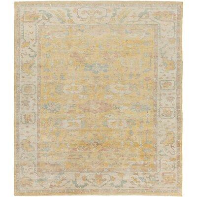 Boissonneault Gold/Beige Area Rug Rug Size: 2 x 3