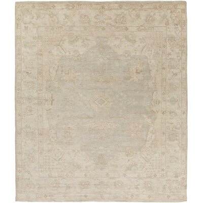 Boissonneault Light Gray/Taupe Area Rug Rug Size: Rectangle 6' x 9'