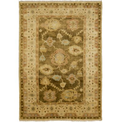 Talence Olive Floral Area Rug Rug Size: 56 x 86