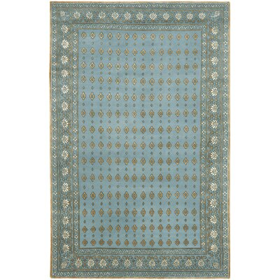 Abere Hand-Knotted Aqua/Beige Area Rug Rug Size: 6 x 9