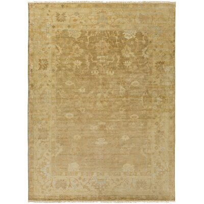 Kangley Traditional Wool Beige Area Rug Rug Size: Rectangle 36 x 56