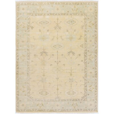 Brie Ivory Area Rug Rug Size: 8 x 11